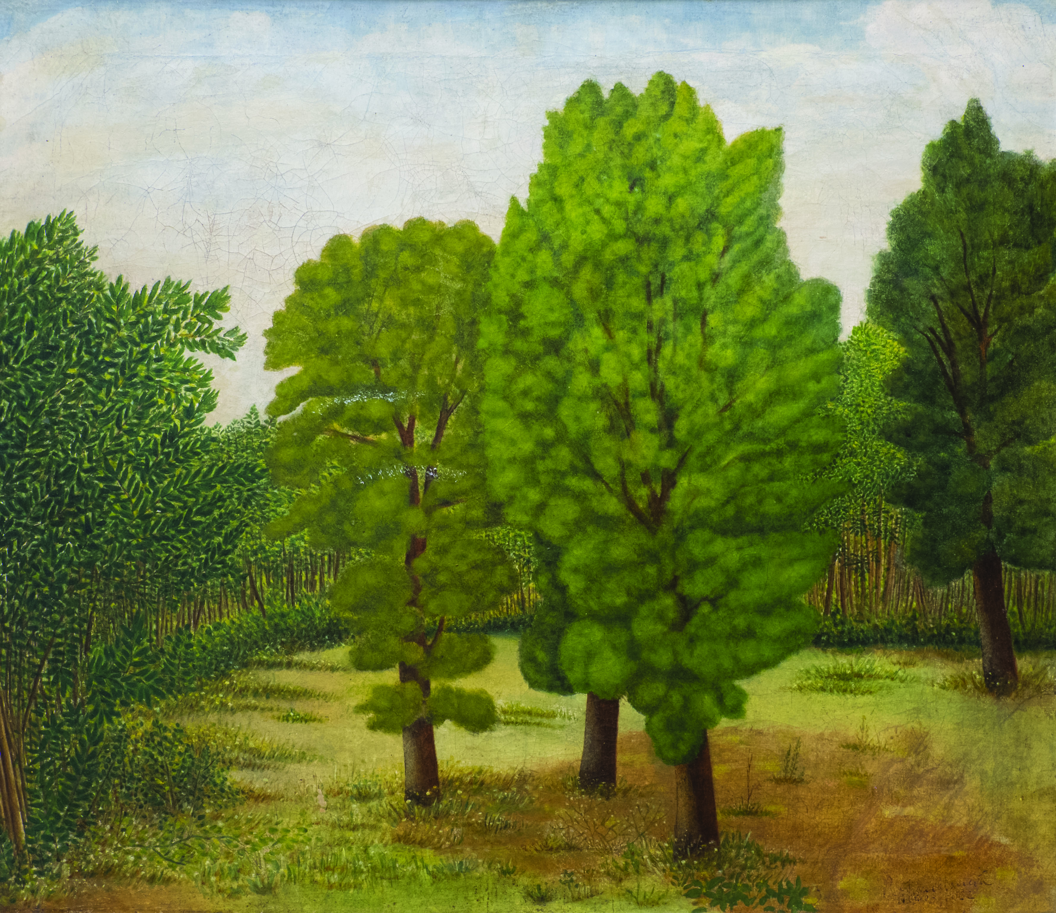 Riccardo Francalancia_Il bosco ceduto